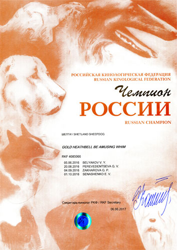 Чемпион России Gold Heathbell Be Amusing Whim